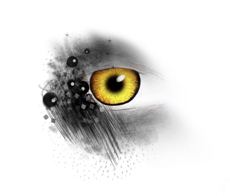 eyedrawingcopy