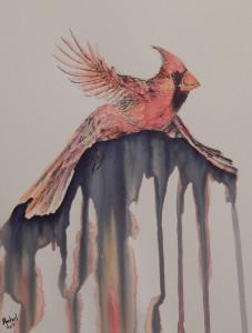 Rachel's Cardinal